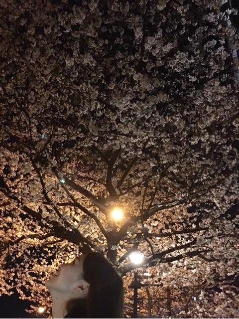 新しい春。の記事より